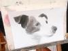 disegno-cane-sul-cavalletto