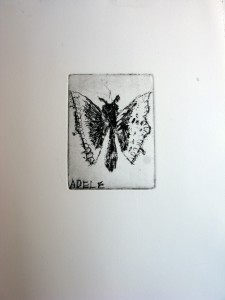 farfalla ad acquaforte, laboratorio per bambini Firenze