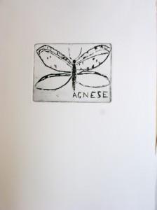dessin de papillon à la gravure, cours de gravure à l'eau forte a Florence