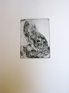 Dessin de lapin à l'eau forte  cours de gravure pour enfants