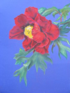 V.P, peonia, pastel on Fabriano paper, cm 50x70